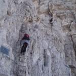 Elisa sulla scala alla fine della errata sopra Rif. Alimonta